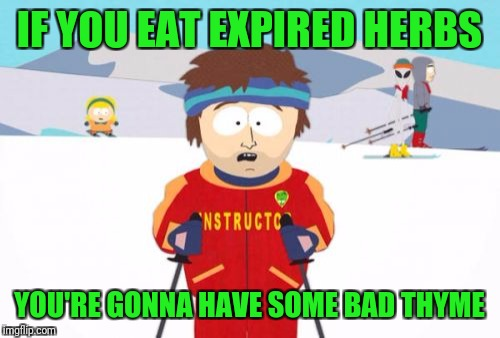 Super Cool Ski Instructor | IF YOU EAT EXPIRED HERBS YOU'RE GONNA HAVE SOME BAD THYME | image tagged in memes,super cool ski instructor | made w/ Imgflip meme maker
