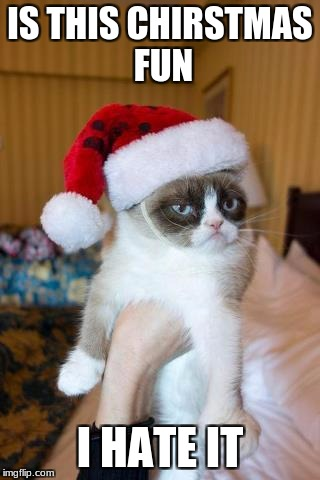 Christmas fun  | IS THIS CHIRSTMAS FUN I HATE IT | image tagged in memes,grumpy cat christmas,grumpy cat | made w/ Imgflip meme maker