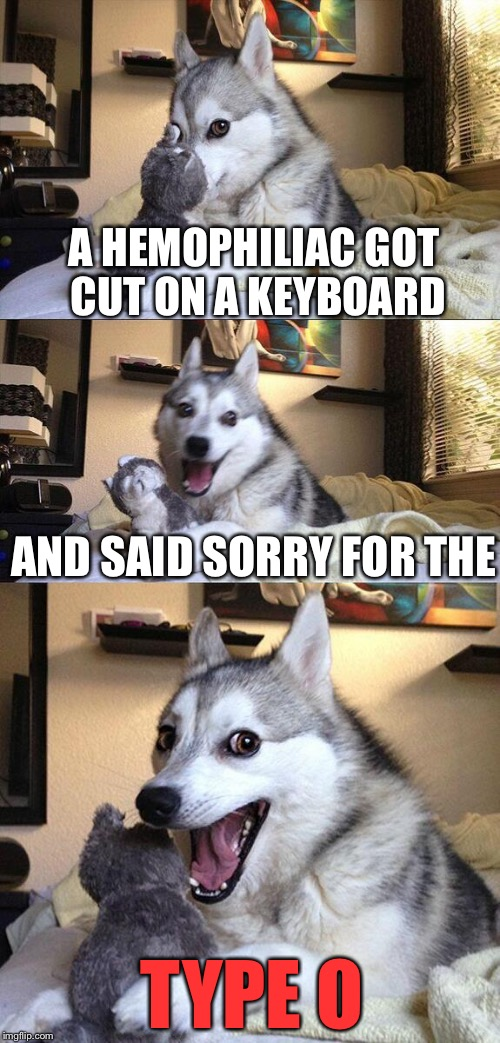 Bad Pun Dog Meme | A HEMOPHILIAC GOT CUT ON A KEYBOARD AND SAID SORRY FOR THE TYPE O | image tagged in memes,bad pun dog | made w/ Imgflip meme maker