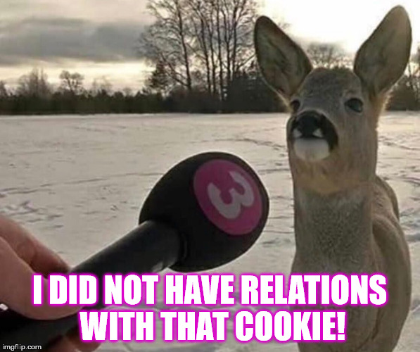 I DID NOT HAVE RELATIONS WITH THAT COOKIE! | made w/ Imgflip meme maker
