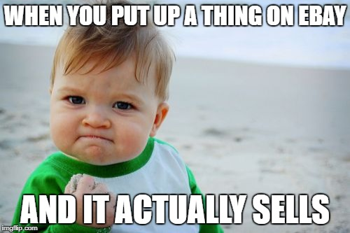 Success Kid Original | WHEN YOU PUT UP A THING ON EBAY AND IT ACTUALLY SELLS | image tagged in memes,success kid original | made w/ Imgflip meme maker