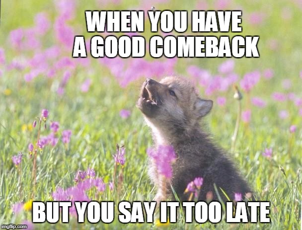 Baby Insanity Wolf Meme | WHEN YOU HAVE A GOOD COMEBACK BUT YOU SAY IT TOO LATE | image tagged in memes,baby insanity wolf,comeback,wolf,burn | made w/ Imgflip meme maker
