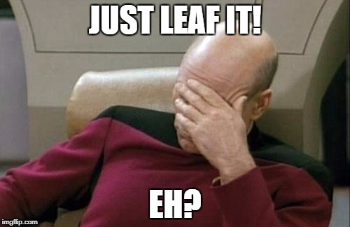 Captain Picard Facepalm Meme | JUST LEAF IT! EH? | image tagged in memes,captain picard facepalm | made w/ Imgflip meme maker