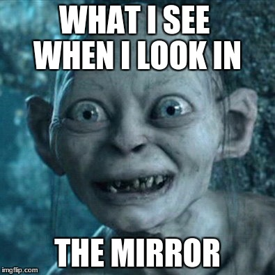 Gollum Meme | WHAT I SEE  WHEN I LOOK IN THE MIRROR | image tagged in memes,gollum | made w/ Imgflip meme maker