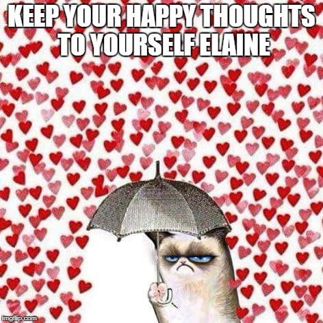 Grumpy cat | KEEP YOUR HAPPY THOUGHTS TO YOURSELF ELAINE | image tagged in grumpy cat | made w/ Imgflip meme maker