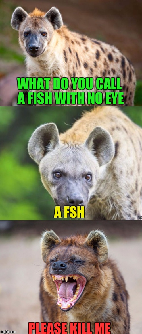 Bad Pun Hyena | WHAT DO YOU CALL A FISH WITH NO EYE PLEASE KILL ME A FSH | image tagged in bad pun hyena | made w/ Imgflip meme maker