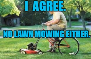 I  AGREE. NO LAWN MOWING EITHER. | made w/ Imgflip meme maker