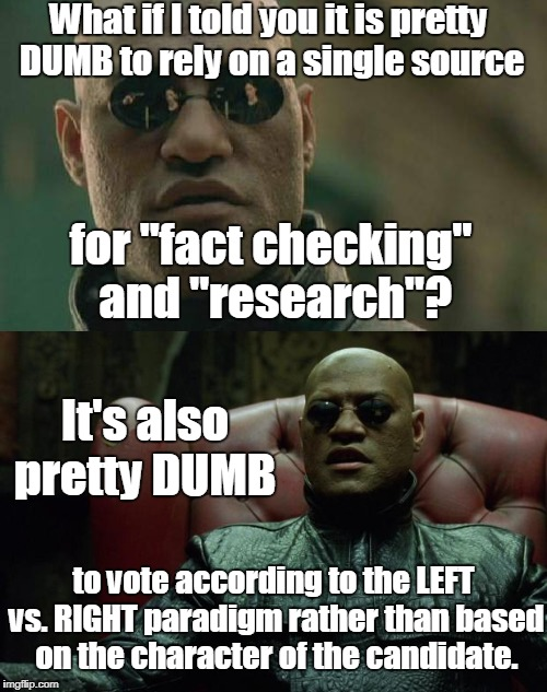 What if I told you it is pretty DUMB to rely on a single source to vote according to the LEFT vs. RIGHT paradigm rather than based on the ch | made w/ Imgflip meme maker