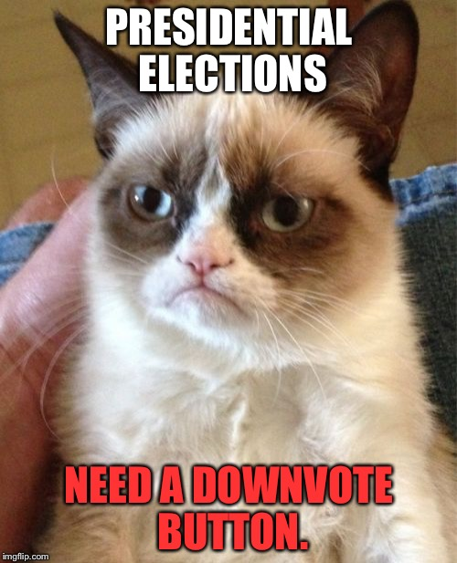 Downvote the elections | PRESIDENTIAL ELECTIONS NEED A DOWNVOTE BUTTON. | image tagged in memes,grumpy cat,downvote,election,button,politicians suck | made w/ Imgflip meme maker