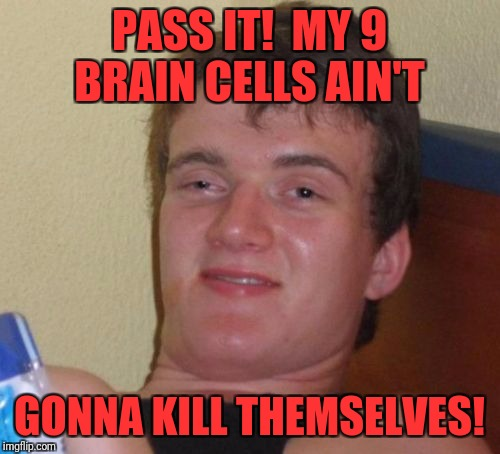 10 Guy Meme | PASS IT!  MY 9 BRAIN CELLS AIN'T GONNA KILL THEMSELVES! | image tagged in memes,10 guy | made w/ Imgflip meme maker