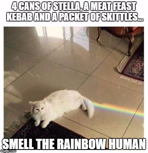 SMELL THE RAINBOW HUMAN | image tagged in catsale | made w/ Imgflip meme maker