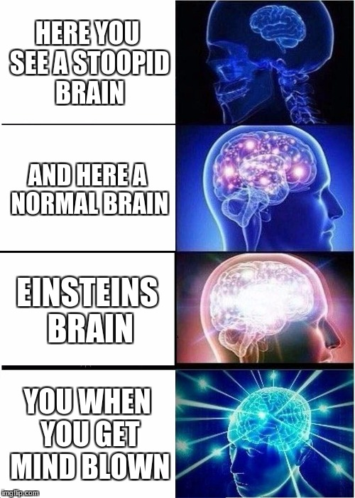Expanding Brain Meme | HERE YOU SEE A STOOPID BRAIN AND HERE A NORMAL BRAIN EINSTEINS BRAIN YOU WHEN YOU GET MIND BLOWN | image tagged in memes,expanding brain | made w/ Imgflip meme maker