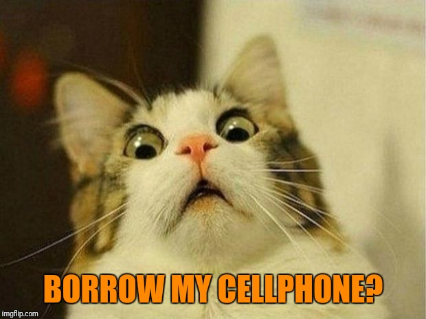 Scared Cat Meme | BORROW MY CELLPHONE? | image tagged in memes,scared cat | made w/ Imgflip meme maker