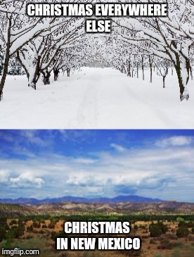 CHRISTMAS EVERYWHERE ELSE CHRISTMAS IN NEW MEXICO | image tagged in christmas memes | made w/ Imgflip meme maker