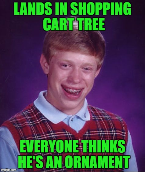 Bad Luck Brian Meme | LANDS IN SHOPPING CART TREE EVERYONE THINKS HE'S AN ORNAMENT | image tagged in memes,bad luck brian | made w/ Imgflip meme maker