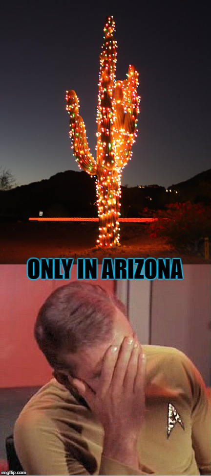 ONLY IN ARIZONA | made w/ Imgflip meme maker
