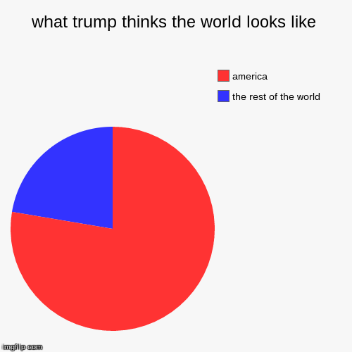 what trump thinks the world looks like | the rest of the world, america | image tagged in funny,pie charts | made w/ Imgflip pie chart maker