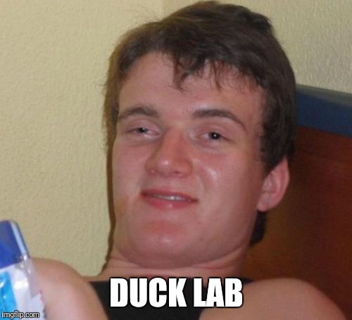 10 Guy Meme | DUCK LAB | image tagged in memes,10 guy | made w/ Imgflip meme maker