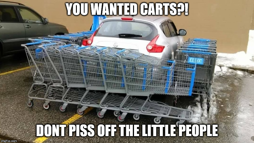 YOU WANTED CARTS?! DONT PISS OFF THE LITTLE PEOPLE | image tagged in cart her | made w/ Imgflip meme maker