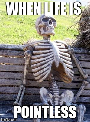 Waiting Skeleton Meme | WHEN LIFE IS POINTLESS | image tagged in memes,waiting skeleton | made w/ Imgflip meme maker