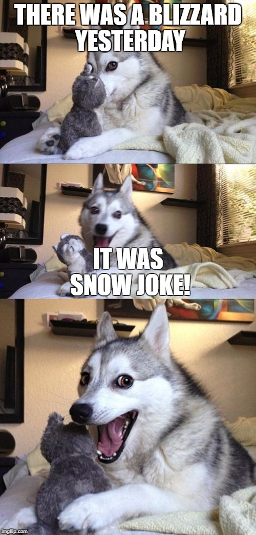 It's really dangerous though! | THERE WAS A BLIZZARD YESTERDAY IT WAS SNOW JOKE! | image tagged in bad joke dog,winter,blizzard | made w/ Imgflip meme maker