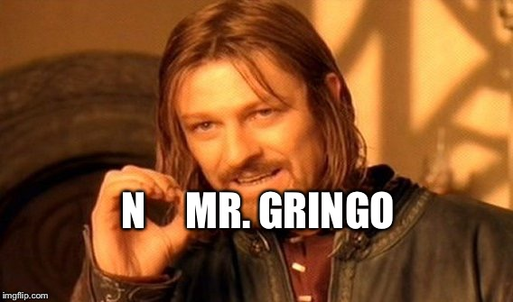 One Does Not Simply Meme | N     MR. GRINGO | image tagged in memes,one does not simply | made w/ Imgflip meme maker