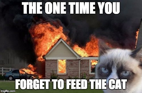 Burn Kitty Meme | THE ONE TIME YOU FORGET TO FEED THE CAT | image tagged in memes,burn kitty,grumpy cat | made w/ Imgflip meme maker