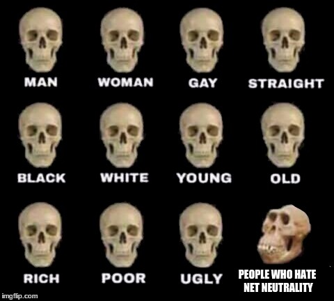 idiot skull | PEOPLE WHO HATE NET NEUTRALITY | image tagged in idiot skull | made w/ Imgflip meme maker