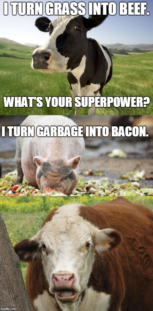 Animal Powers Battle | I TURN GRASS INTO BEEF. I TURN GARBAGE INTO BACON. WHAT'S YOUR SUPERPOWER? | image tagged in bacon | made w/ Imgflip meme maker
