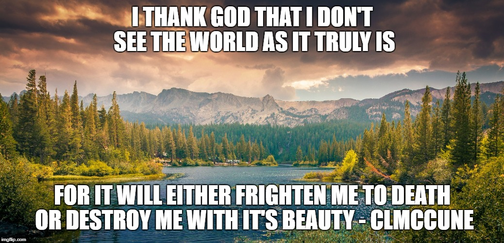 I THANK GOD THAT I DON'T SEE THE WORLD AS IT TRULY IS FOR IT WILL EITHER FRIGHTEN ME TO DEATH OR DESTROY ME WITH IT'S BEAUTY - CLMCCUNE | image tagged in landscape | made w/ Imgflip meme maker