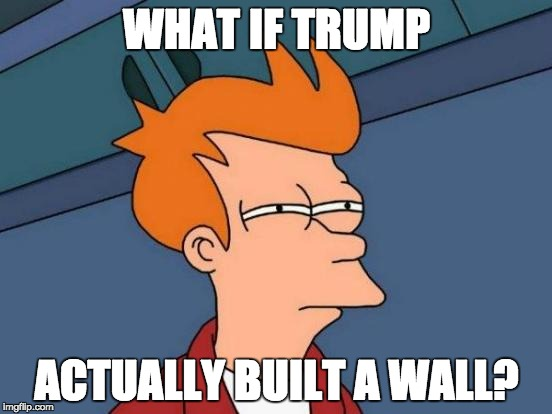 Futurama Fry Meme | WHAT IF TRUMP ACTUALLY BUILT A WALL? | image tagged in memes,futurama fry | made w/ Imgflip meme maker