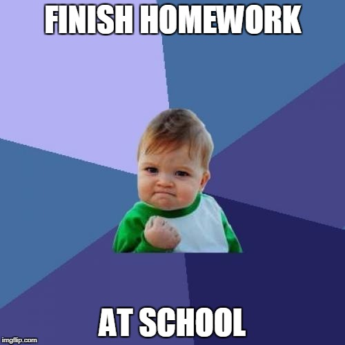 Success Kid Meme | FINISH HOMEWORK AT SCHOOL | image tagged in memes,success kid | made w/ Imgflip meme maker