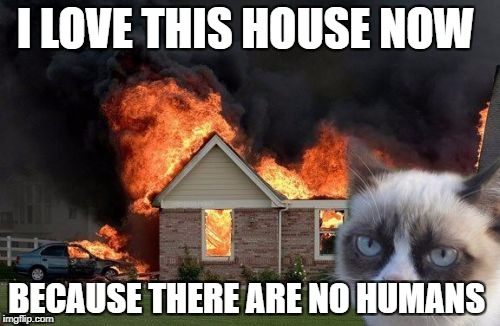 Burn Kitty Meme | I LOVE THIS HOUSE NOW BECAUSE THERE ARE NO HUMANS | image tagged in memes,burn kitty,grumpy cat | made w/ Imgflip meme maker