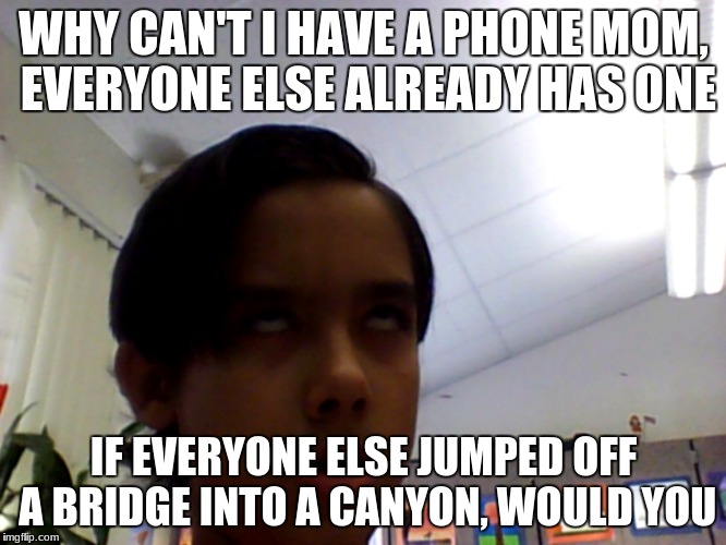 WHY CAN'T I HAVE A PHONE MOM, EVERYONE ELSE ALREADY HAS ONE IF EVERYONE ELSE JUMPED OFF A BRIDGE INTO A CANYON, WOULD YOU | image tagged in blah blah blah | made w/ Imgflip meme maker