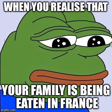 pepe | WHEN YOU REALISE THAT YOUR FAMILY IS BEING EATEN IN FRANCE | image tagged in pepe | made w/ Imgflip meme maker