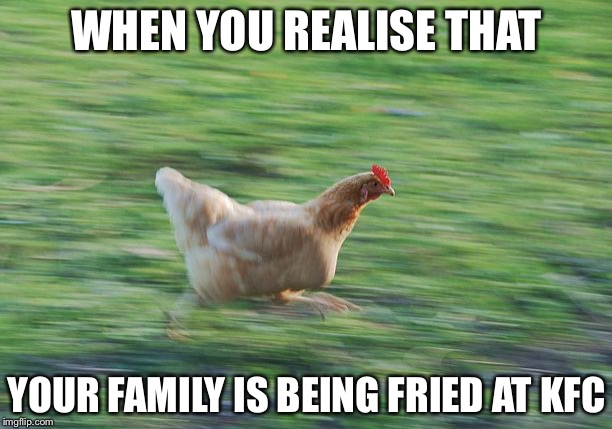 WHEN YOU REALISE THAT YOUR FAMILY IS BEING FRIED AT KFC | image tagged in fast running chicken | made w/ Imgflip meme maker