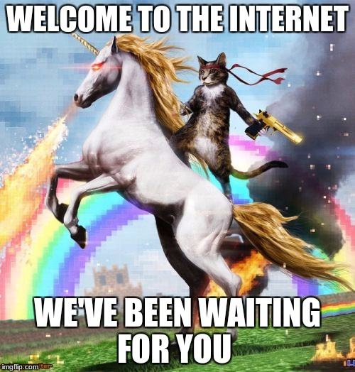 Welcome To The Internets Meme | WELCOME TO THE INTERNET WE'VE BEEN WAITING FOR YOU | image tagged in memes,welcome to the internets | made w/ Imgflip meme maker