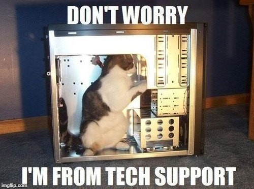RayCat in Technical Support  | DON'T WORRY I'M FROM TECH SUPPORT | image tagged in raycat in technical support,memes | made w/ Imgflip meme maker