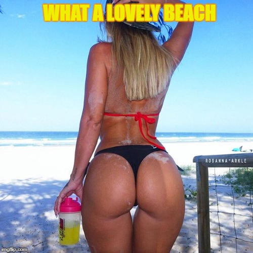 WHAT A LOVELY BEACH | made w/ Imgflip meme maker