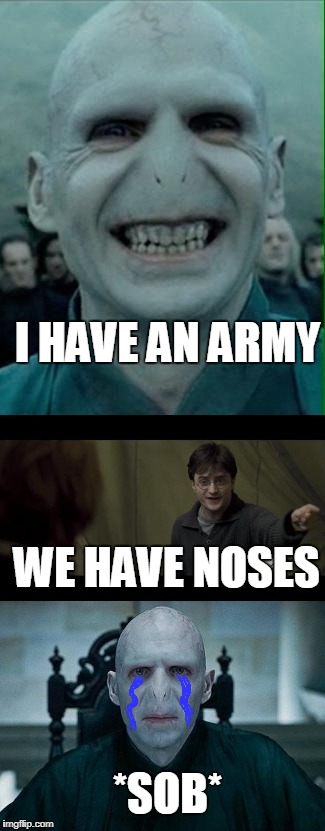 Voldemort Gets Roasted (redo) | I HAVE AN ARMY WE HAVE NOSES *SOB* | image tagged in voldemort,voldemort grin,lord voldemort,harry potter,memes,funny | made w/ Imgflip meme maker