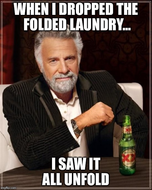 The Most Interesting Man In The World Meme | WHEN I DROPPED THE FOLDED LAUNDRY... I SAW IT ALL UNFOLD | image tagged in memes,the most interesting man in the world | made w/ Imgflip meme maker