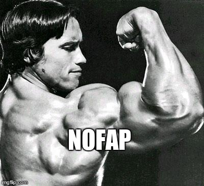 NOFAP | image tagged in arnold | made w/ Imgflip meme maker
