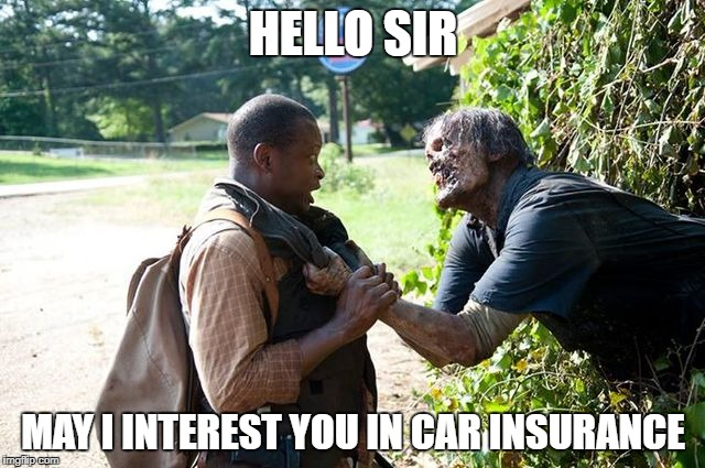 TWD Hello sir! | HELLO SIR MAY I INTEREST YOU IN CAR INSURANCE | image tagged in twd hello sir | made w/ Imgflip meme maker
