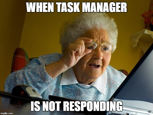 Grandma Finds The Internet Meme | WHEN TASK MANAGER IS NOT RESPONDING | image tagged in memes,grandma finds the internet | made w/ Imgflip meme maker