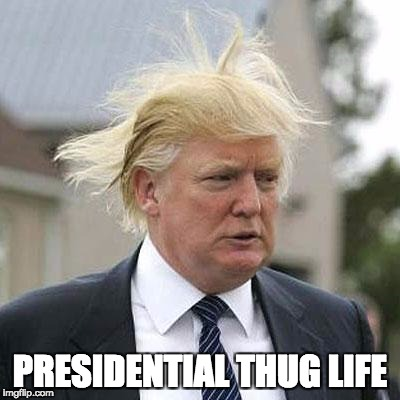 Donald Trump | PRESIDENTIAL THUG LIFE | image tagged in donald trump | made w/ Imgflip meme maker