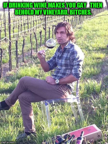 IF DRINKING WINE MAKES YOU GAY_THEN BEHOLD MY VINEYARD, B**CHES. | image tagged in pirlo wine,wine,ha gay,bro,bruh,homo | made w/ Imgflip meme maker
