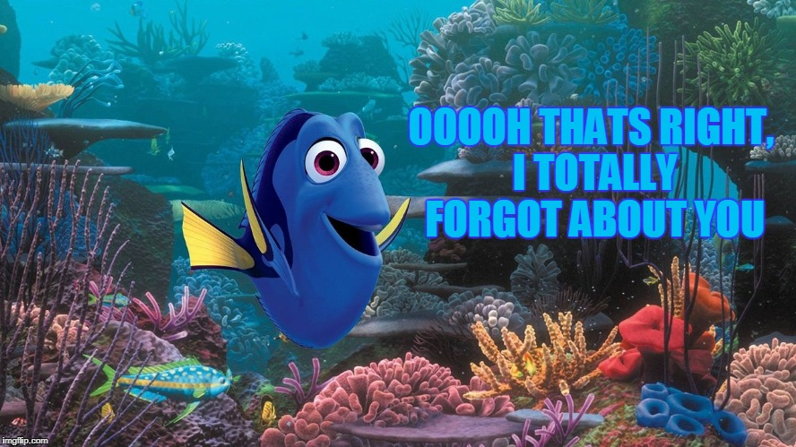dori who | OOOOH THATS RIGHT, I TOTALLY FORGOT ABOUT YOU | image tagged in dori who | made w/ Imgflip meme maker
