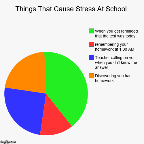 Things That Cause Stress At School | Discovering you had homework, Teacher calling on you when you dn't know the answer, remembering your ho | image tagged in funny,pie charts | made w/ Imgflip chart maker