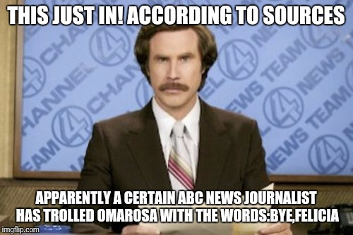 Ron Burgundy Meme | THIS JUST IN! ACCORDING TO SOURCES APPARENTLY A CERTAIN ABC NEWS JOURNALIST HAS TROLLED OMAROSA WITH THE WORDS:BYE,FELICIA | image tagged in memes,ron burgundy | made w/ Imgflip meme maker