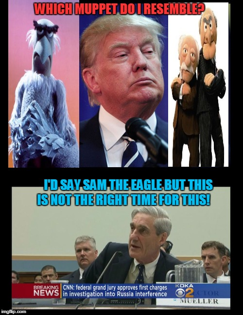 Trump Can't Stump Mueller! | WHICH MUPPET DO I RESEMBLE? I'D SAY SAM THE EAGLE BUT THIS IS NOT THE RIGHT TIME FOR THIS! | image tagged in trump mueller indictments,the muppets | made w/ Imgflip meme maker